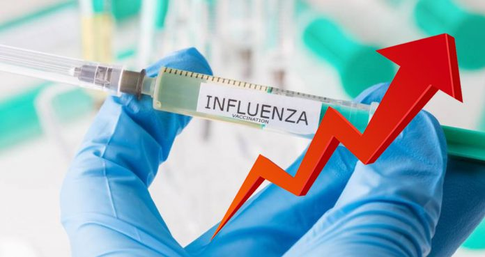 Global Influenza Vaccine Market