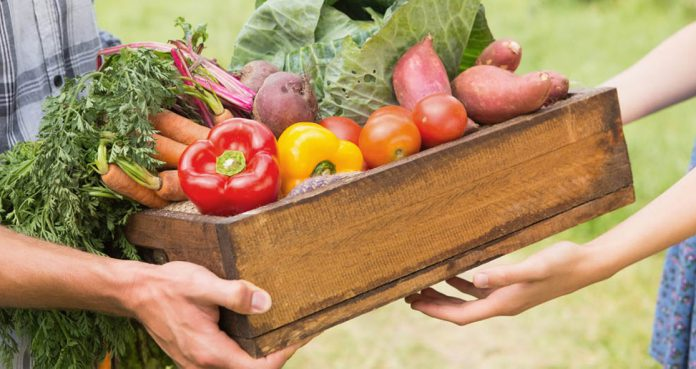 participating Food Projects Improve Mental Health