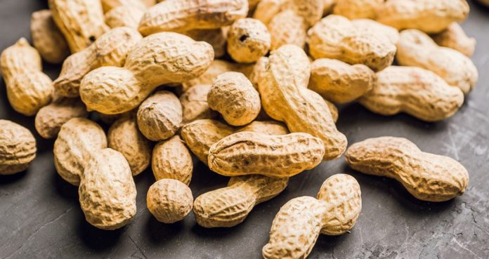 FDA-Recommends-Approval-of-Palforzia-for-Children-with-Peanut-Allergy